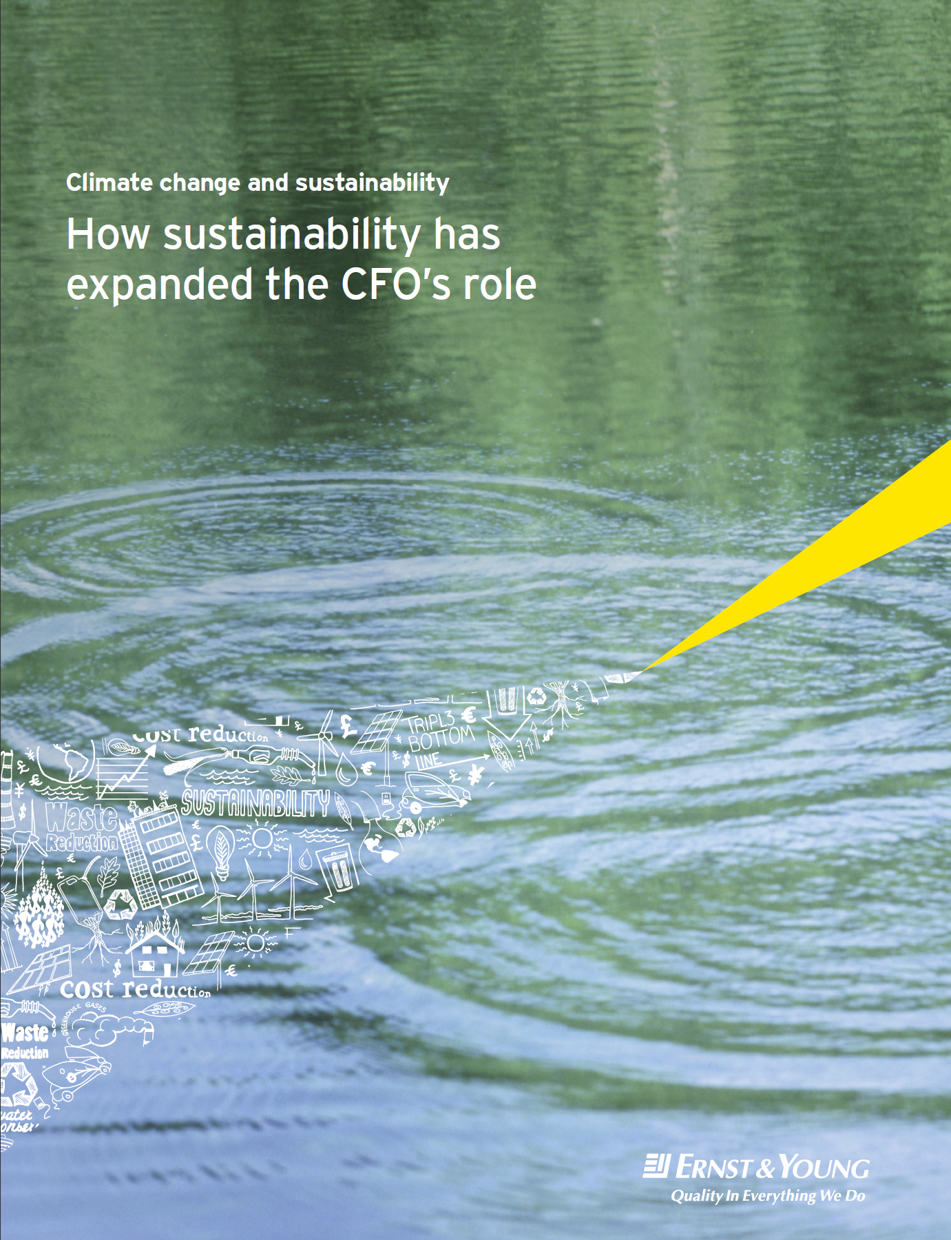 How sustainability has expanded the cfos role